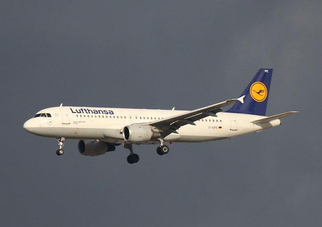 """A 320-211  """" D-AIPE """"  Lufthansa -1"""