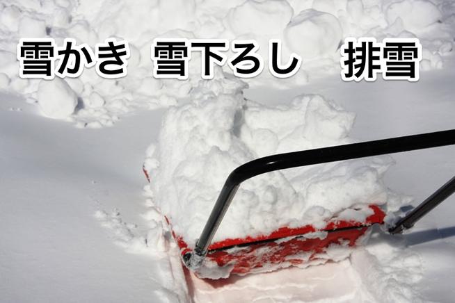 雪かき 笑顔の便利屋さん まごころ屋