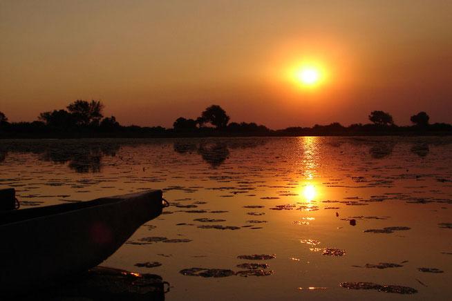 Okavango Delta 2006