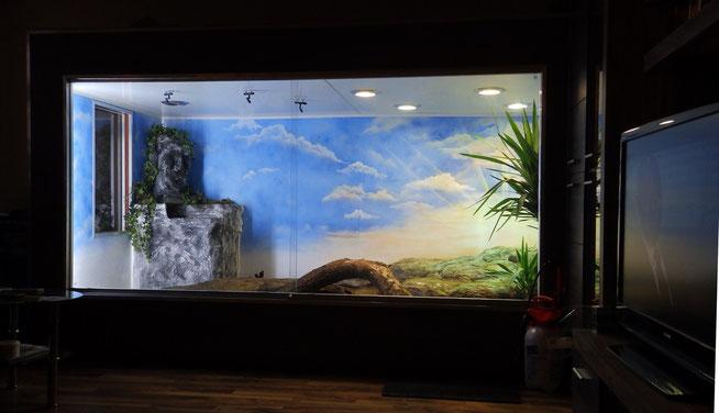 Grosses Terrarium für ein Tejupärchen