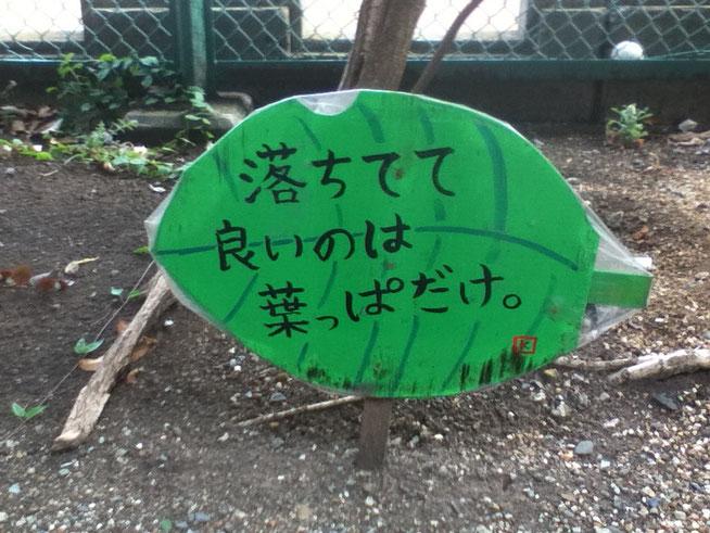 東京の四谷駅近くの公園にてふと目が止まる