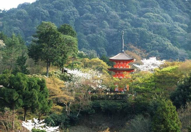 Koyasu-no-to depuis le Butai