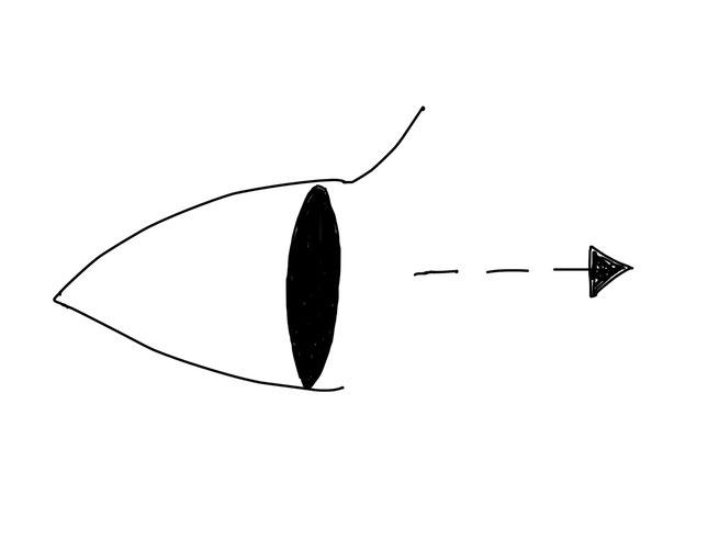 アイコン 「見る」 (作: 塚原 美樹) ~ 点線矢印を描くことで、目がどこかを注目していることを表現する