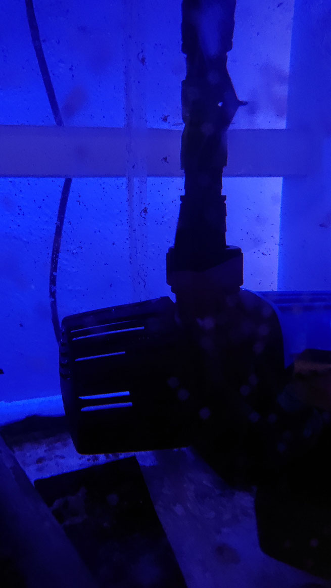 hsbao dcポンプ 直流ポンプ オーバーフロー水槽 DEP-4000 DCポンプ