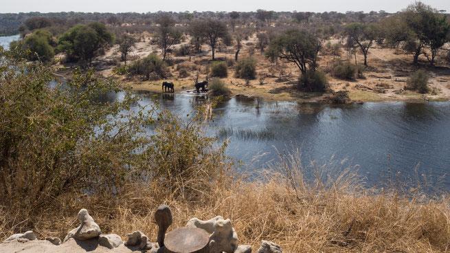 meno a kwena | boteti river | botswana