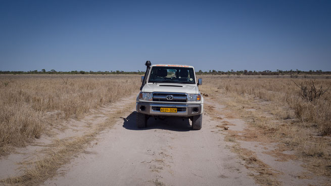 safari  landcruiser central kalahari national park botswana