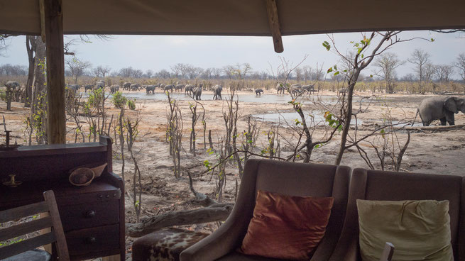 hyena pan camp | wilderness safaris | khwai private concession | botswana 2017