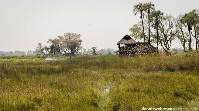 gunns camp okavango delta botswana