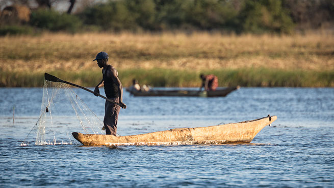 traditionelles fischen | sambesi | kalizo lodge | caprivi strip | namibia