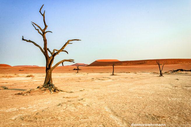 dead vlei sossusvlei namib naukluft park namibia