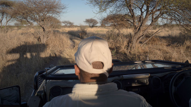 safari central kalahari botswana