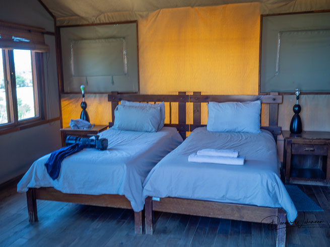 kgalagadi transfrontier park south africa - lodge kalahari tented camp
