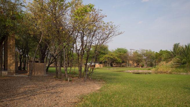 lethlakane makgadikgadi pans botswana