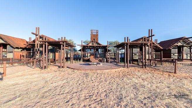 kgalagadi transfrontier park south africa bitterpan