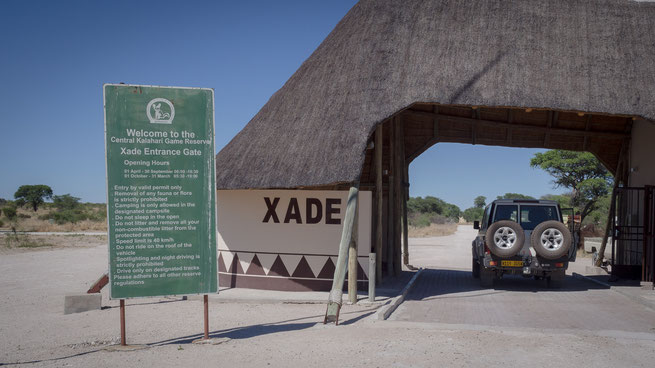 xade gate central kalahari national park botswana