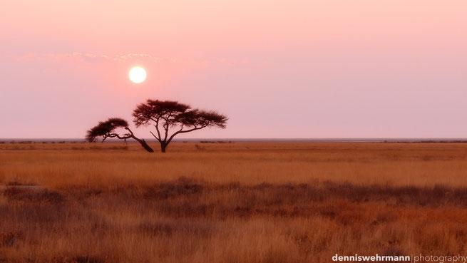 sonnenuntergang etosha nationalpark namibia