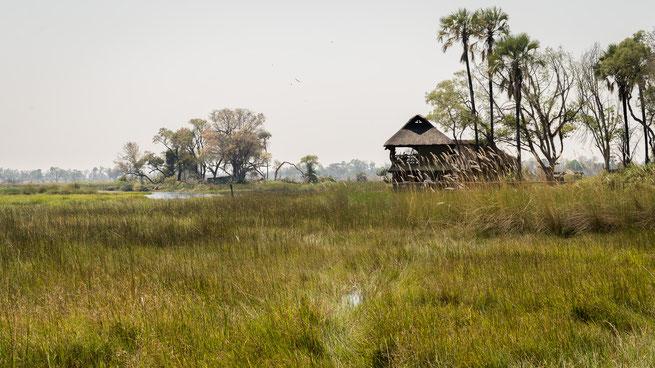 gunns camp | okavango delta | botswana