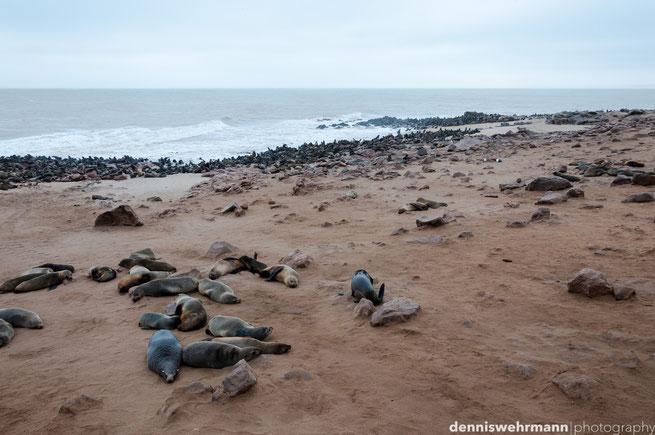skeleton coast cape cross namib wüste namibia