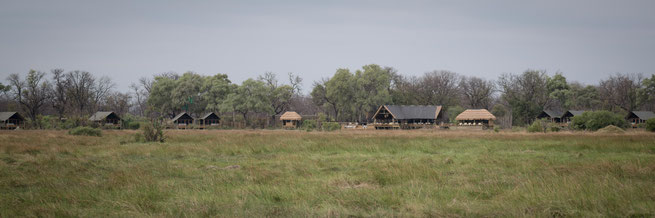 sable alley | wilderness safaris | khwai private concession | botswana 2017