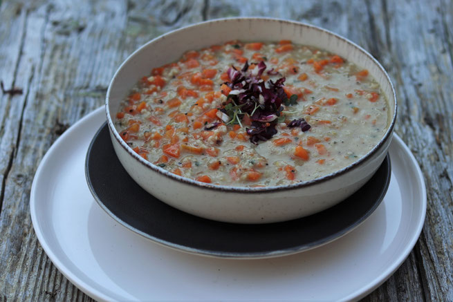 Haferflockensuppe mit Karottenstücken