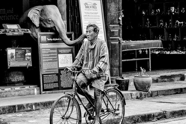 navigation-street-mann-auf-fahrrad-laos-monochrome