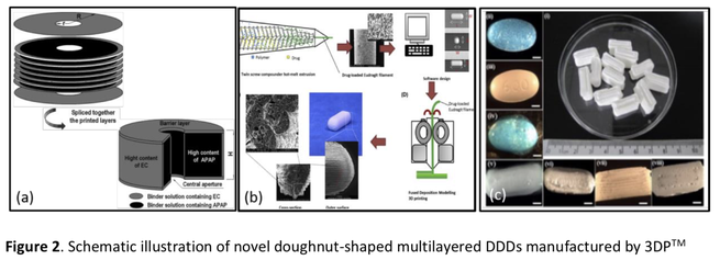 Graphics with details of 3D printed drug delivery device with wood-derived biopolymers