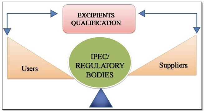 Regulatory aspects of pharmaceutical excipients in India