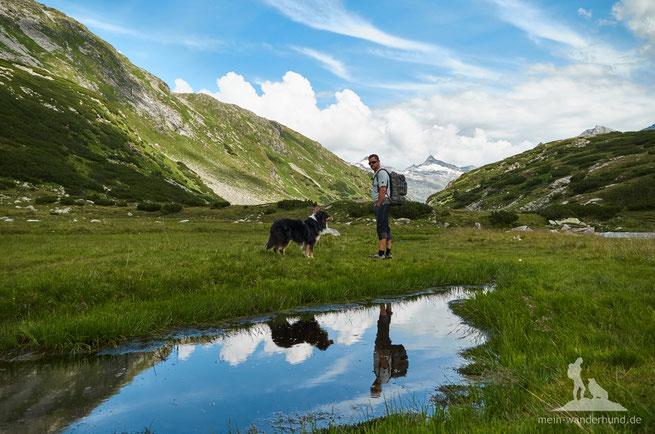 Wandern mit Hund in Berchtesgaden, Chiemgau