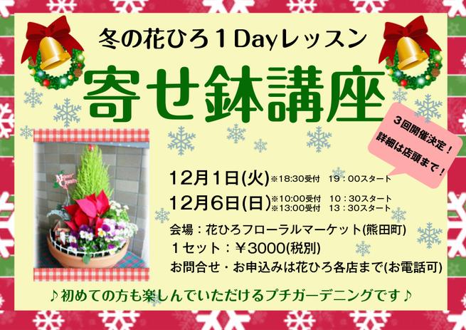 お花教室 ポインセチア シクラメン ガーデニング 福井 鯖江 12月 花ひろ 寄せ植え レッスン hanahiro