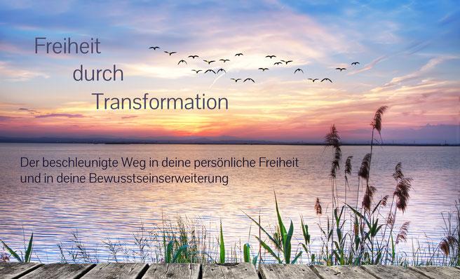 lebeinfreiheit.de- Sonnenuntergang Vögel- Seminar Hamburg Heiler Energiearbeit ganzheitliche Beratung spirituelle Heilung Transformation Persönlichkeitsentwicklung bedingungslose Liebe ganzheitliches Coaching Bewusstseinserweiterung