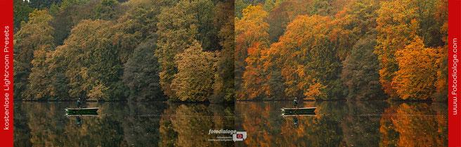 Mit den kostenlosen Presets der Fotoschule Fotodialoge werden Deine Herbstfotos zu Hinguckern.  Hier das Lightroom-Preset Indian Summer