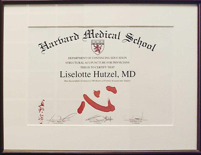 Ausbildung an der Harvard Medical School in Boston/USA
