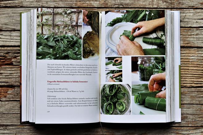 Auszug aus dem Buch Fermentieren von Wildpflanzen