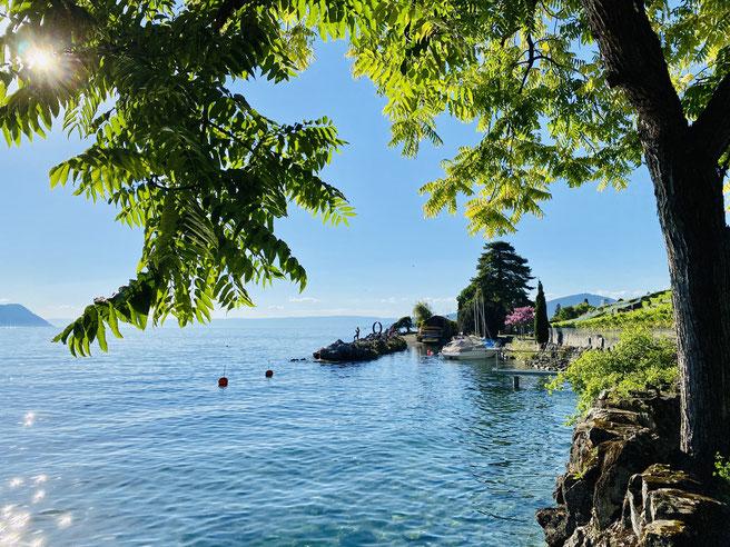 Genfer See, Montreux, Uferpromenade