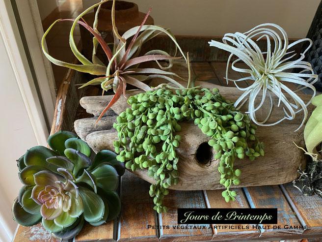 petites-plantes-grasses-artificielles-haut-de-gamme