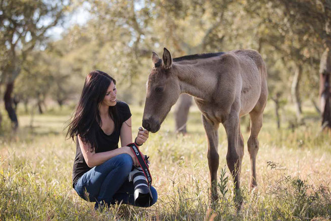 Pferdefotografin Monika Bogner