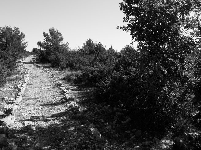 Visovac, Krka, Nationalpark, Croatia, trail, landscape, awesome nature,