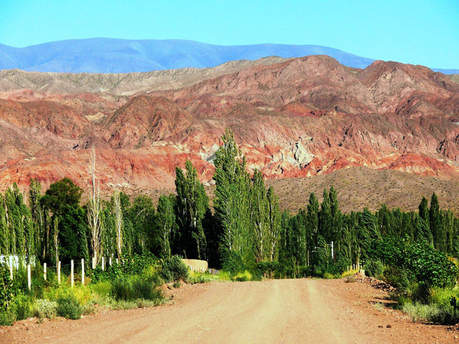Die roten Berge von Barreal, Valle de Calingasta, Region San Juan (Foto Jörg Schwarz)