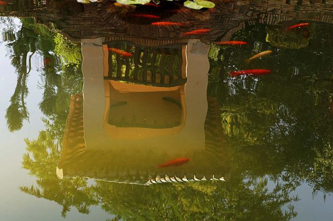 Photographie, Andalousie, Grenade, Alhambra, cité palatiale, palais nasrides, jardins, couleurs, Islam, art, architecture, bassin, poissons rouges, pavillon, eau, arbres, plantes, voyage, Mathieu Guillochon