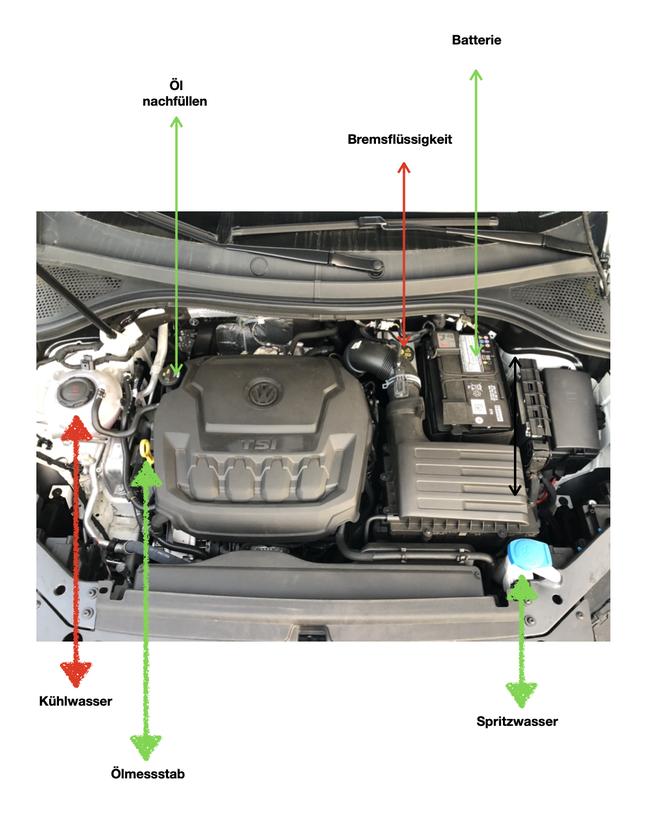 Geöffnete Motorhaube ÖL, Wasser und Batterie