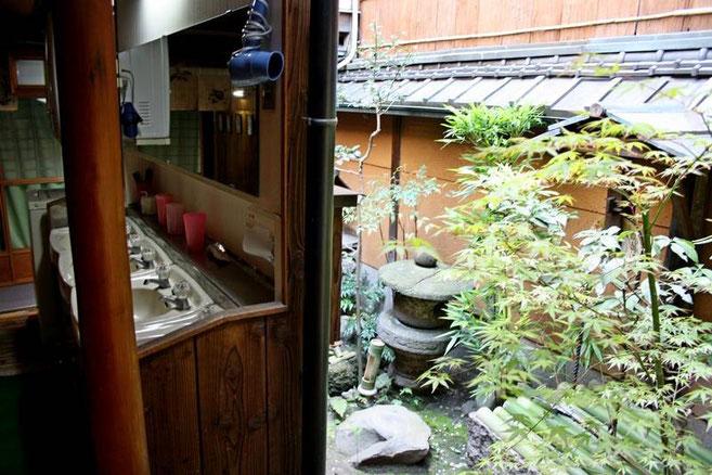 """le jardin et la """"salle d'eau"""""""