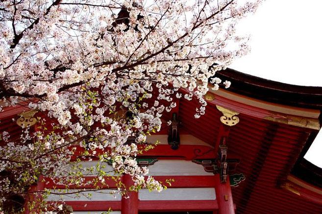 Sakura et Sai Mon (Porte Ouest)