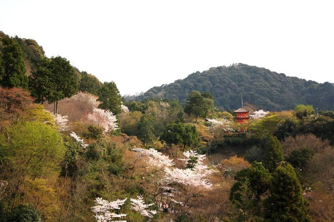 la pagode Koyasu-no-to depuis la terrasse du Hondo