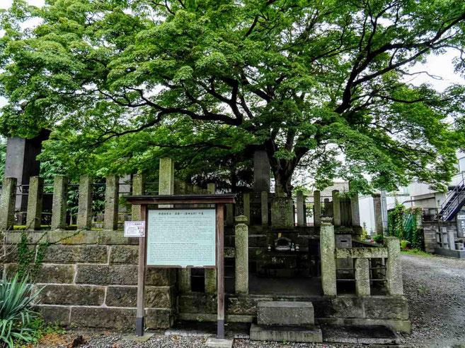 会津若松市 斎藤一の墓がある阿弥陀寺