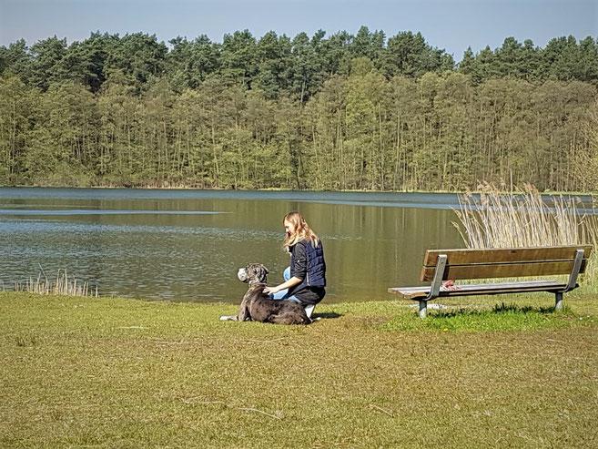 Urlaub mit Hund Mecklenburgische Seenplatte Rheinsberg