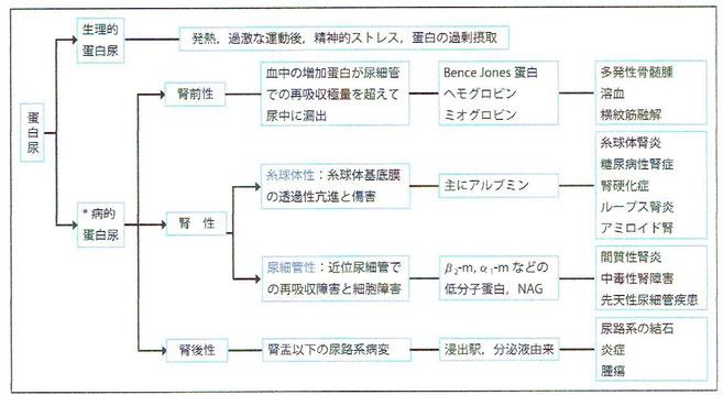 「臨床検査のガイドライン2012」より