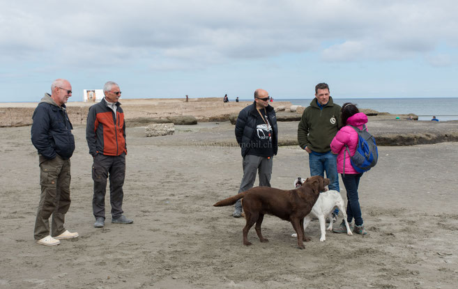 Franjo, Bruno, René, Miki, Karen
