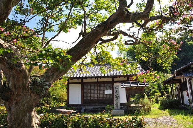 高円山・石位寺
