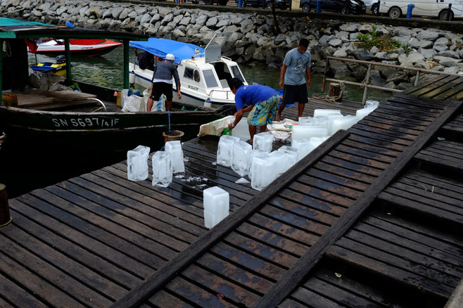 Faszinierend wie die Logistik von vielen Lebensmitteln hier funktioniert. Auf dem Bild seht ihr, wie Eisblöcke in den unteren Teil des Schiffes geladen werden