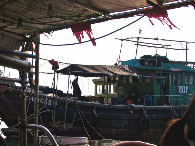 boat trip in Tai O village